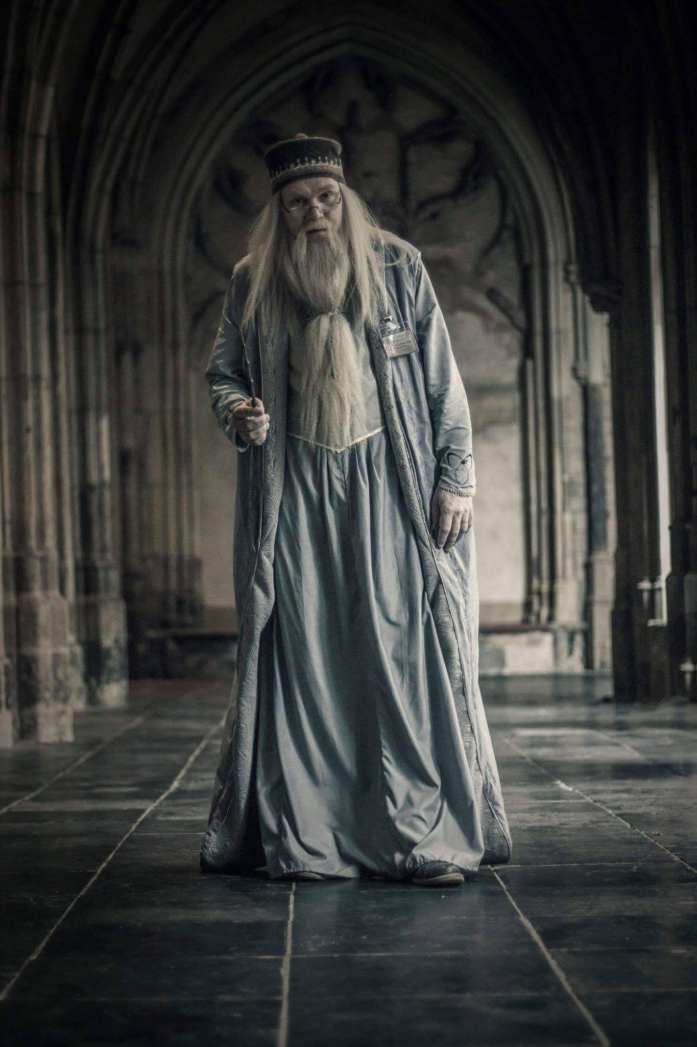 Who is Professor Albus Percival Wulfric Brian Dumbledore